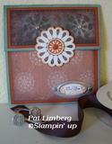 In the Spotlight